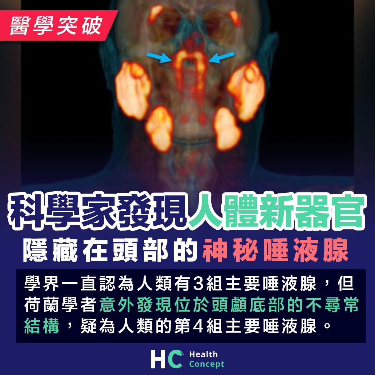 科學家發現人體新器官,一旦被證實或改寫解剖學教科書