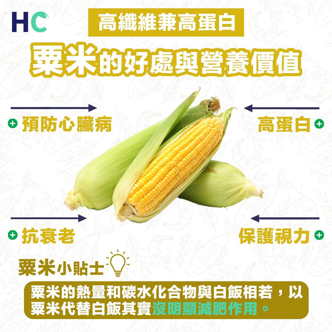 【營養食物】粟米的好處與營養價值