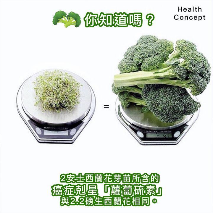 【#營養食品】西蘭花芽 vs 生西蘭花