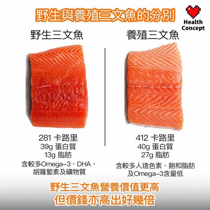 【#營養食品】野生與養殖三文魚的分別