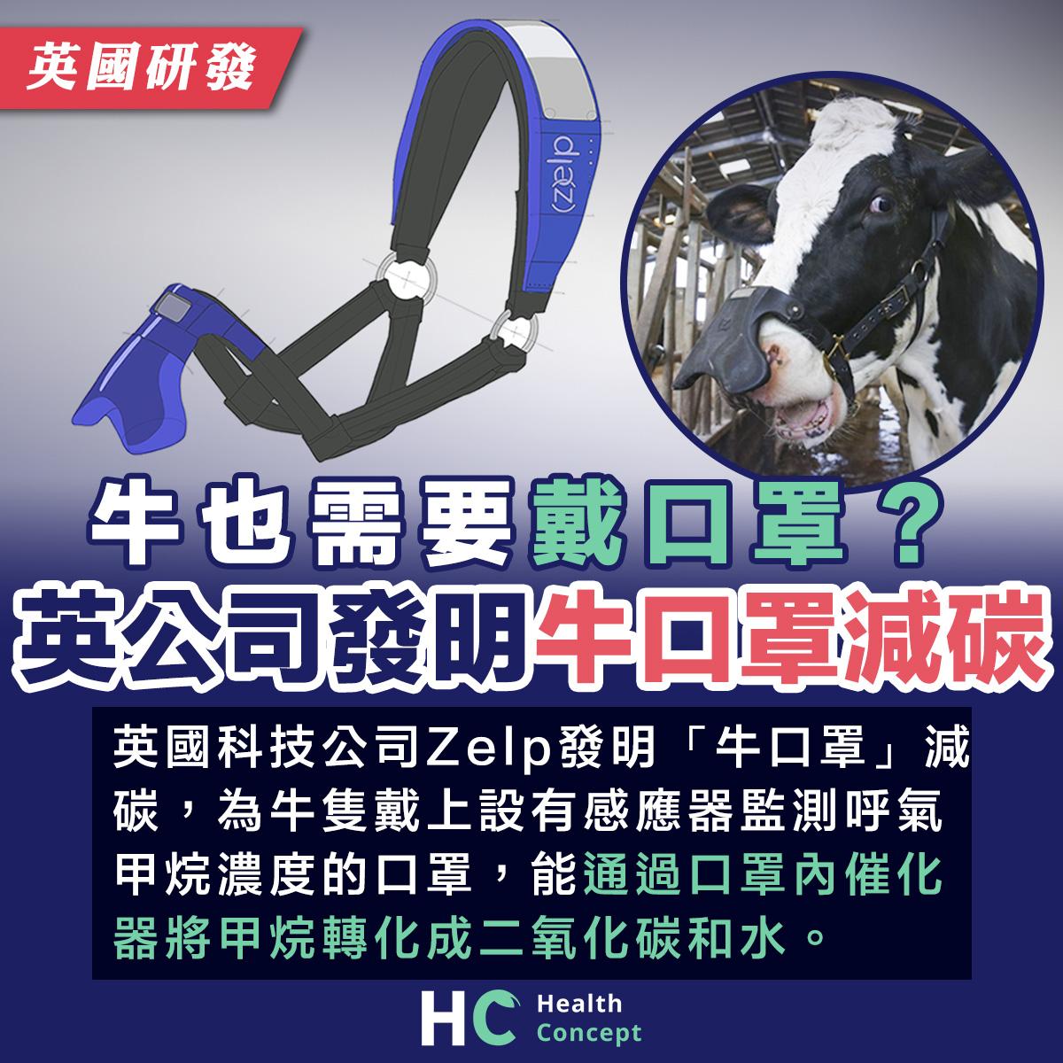 牛也需要戴口罩? 英公司發明牛口罩減碳