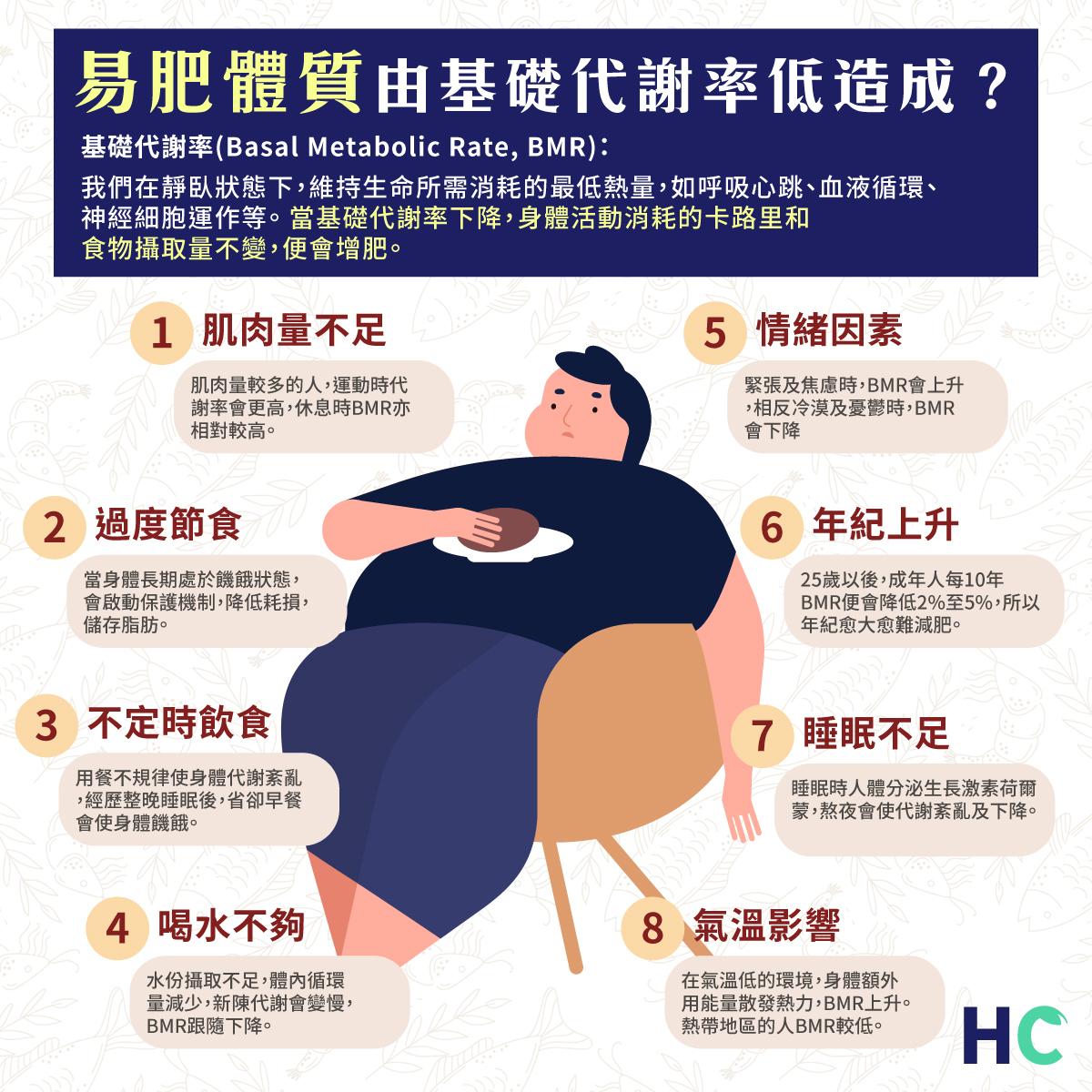 易肥體質  由基礎代謝率低造成?