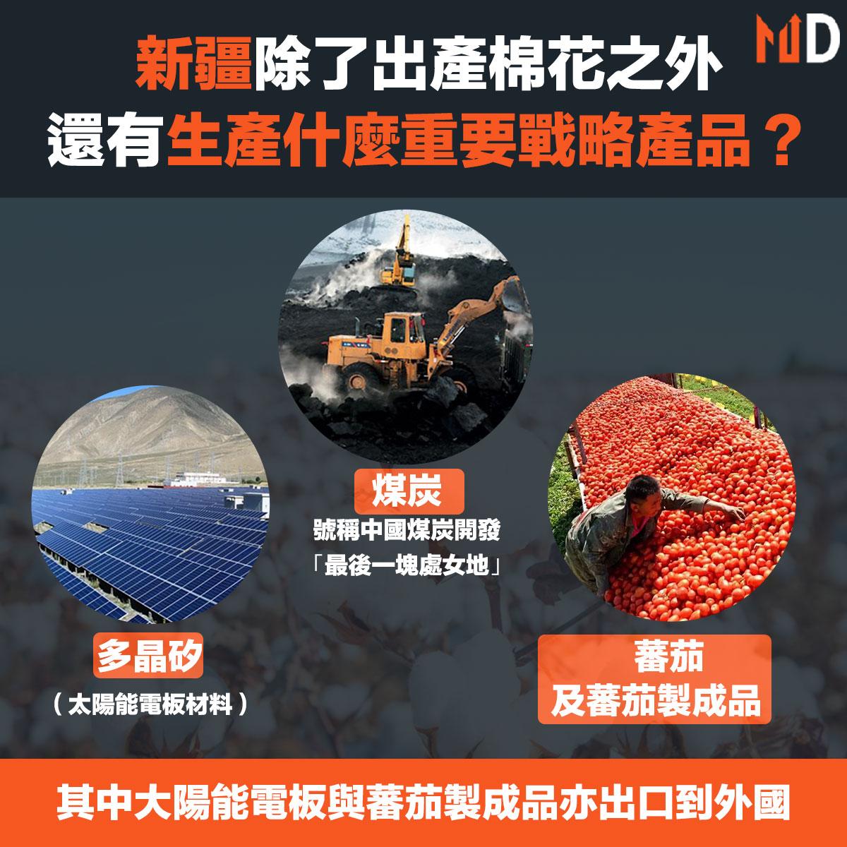 新疆除了出產棉花之外,棉花、煤炭、化學品、糖、蕃茄(以及製成品)和多晶矽(一種太陽能電池板材料)的主要產地