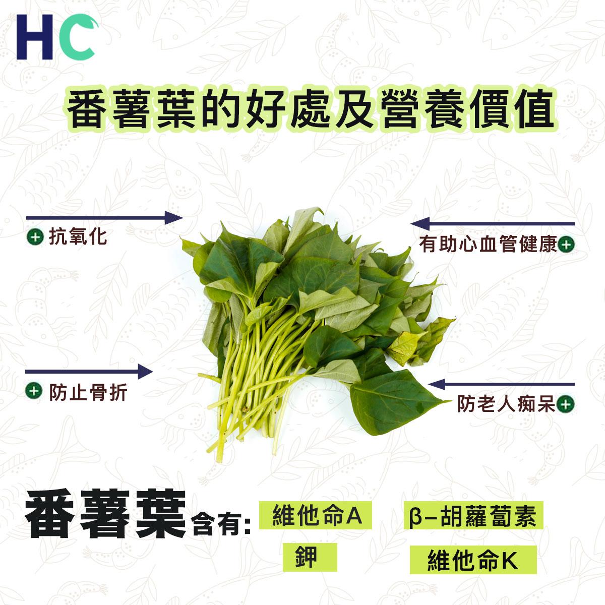 【#營養食物】番薯葉的好處及營養價值