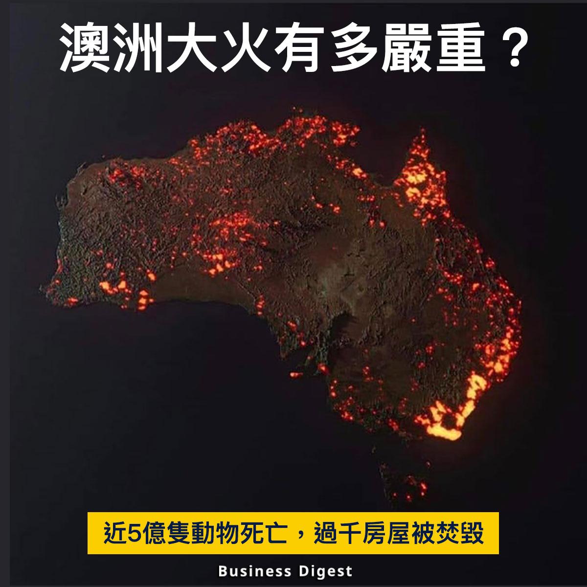 【商業熱話】澳洲大火有多嚴重?近5億隻動物死亡,過千房屋被焚毀