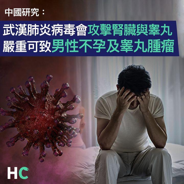 【#武漢肺炎】 中國研究:武漢肺炎病毒會攻擊腎臟與睾丸 嚴重可致男性不孕