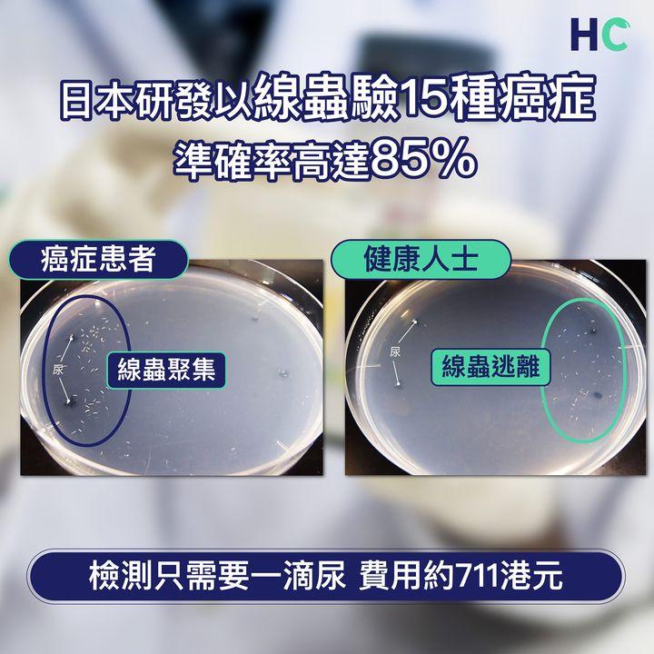 【#疾病資訊】日本研發以線蟲驗15種癌症  準確率高達85%