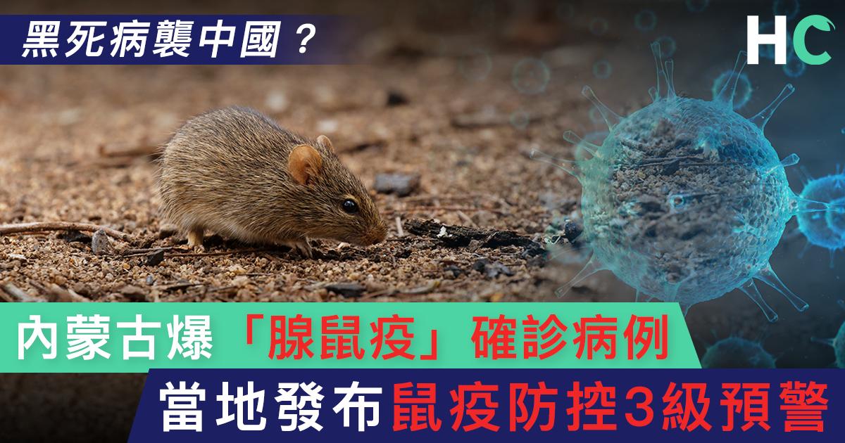 【#新型肺炎】內蒙古爆「腺鼠疫」確診病例 當地發布鼠疫防控3級預警